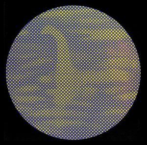 網の目のネッシー トリックアートだまし絵画像